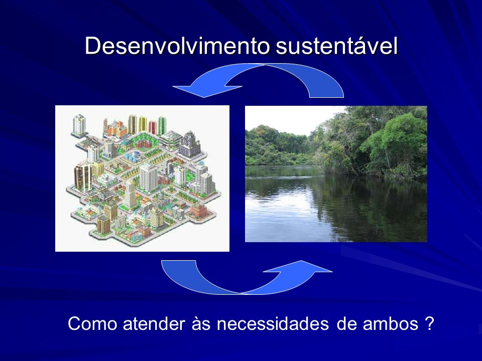 Desenvolvimento sustentável Como atender às necessidades de ambos ?
