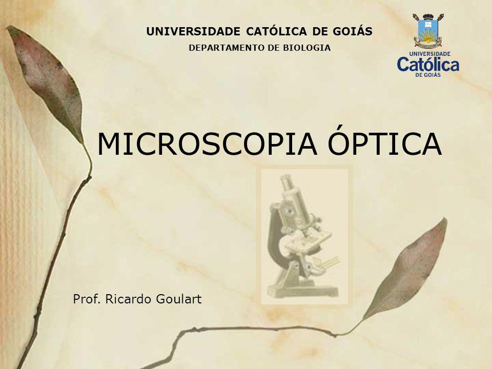 UNIVERSIDADE CATÓLICA DE GOIÁS MICROSCOPIA ÓPTICA Prof. Ricardo Goulart DEPARTAMENTO DE BIOLOGIA
