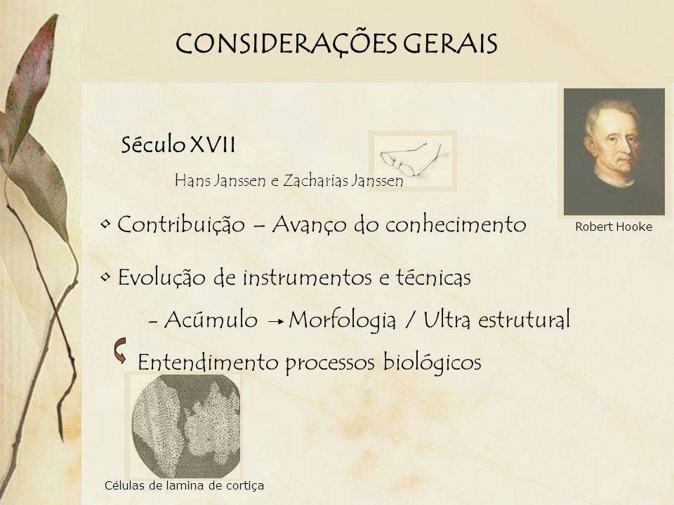 CONSIDERAÇÕES GERAIS Século XVII Contribuição – Avanço do conhecimento Evolução de instrumentos e técnicas - Acúmulo Morfologia / Ultra estrutural Ent