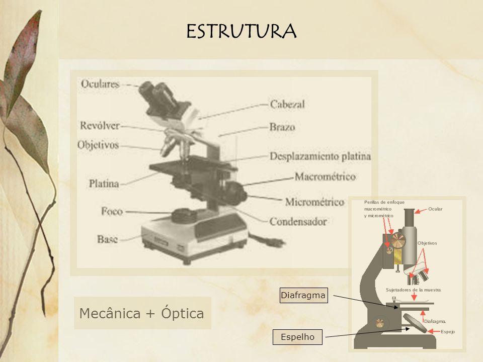 ESTRUTURA Diafragma Mecânica + Óptica Espelho