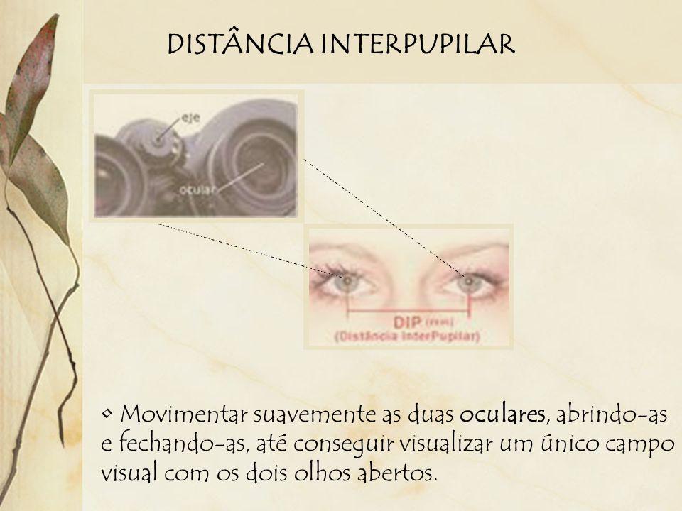 DISTÂNCIA INTERPUPILAR Movimentar suavemente as duas oculares, abrindo-as e fechando-as, até conseguir visualizar um único campo visual com os dois olhos abertos.