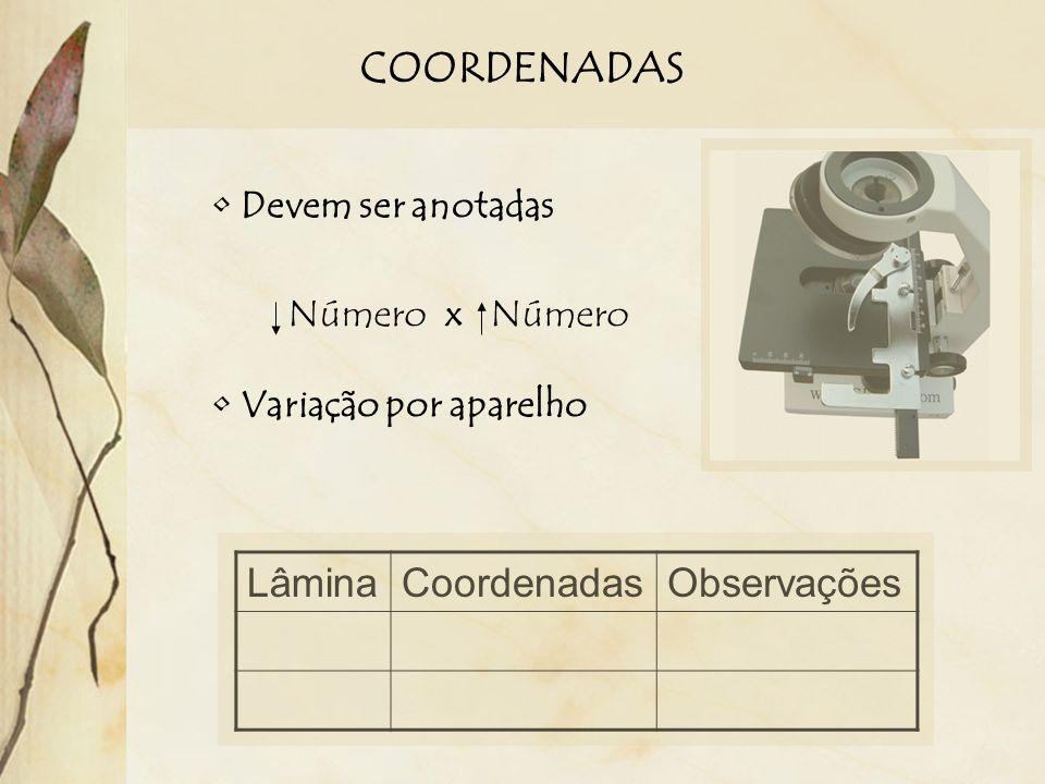COORDENADAS Devem ser anotadas Número x Número Variação por aparelho LâminaCoordenadasObservações