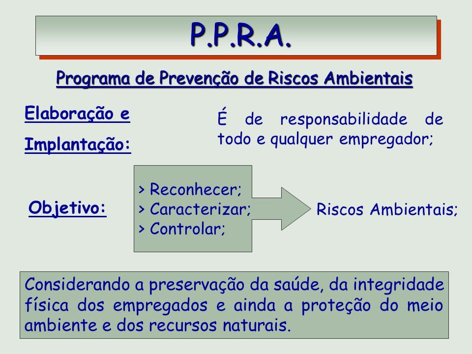 P.P.R.A. P.P.R.A. Programa de Prevenção de Riscos Ambientais Riscos Ambientais; Elaboração e Implantação: É de responsabilidade de todo e qualquer emp