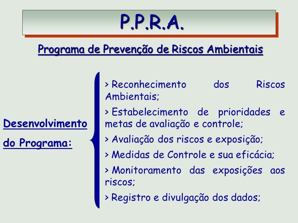 P.P.R.A. P.P.R.A. Programa de Prevenção de Riscos Ambientais Desenvolvimento do Programa: > Reconhecimento dos Riscos Ambientais; > Estabelecimento de
