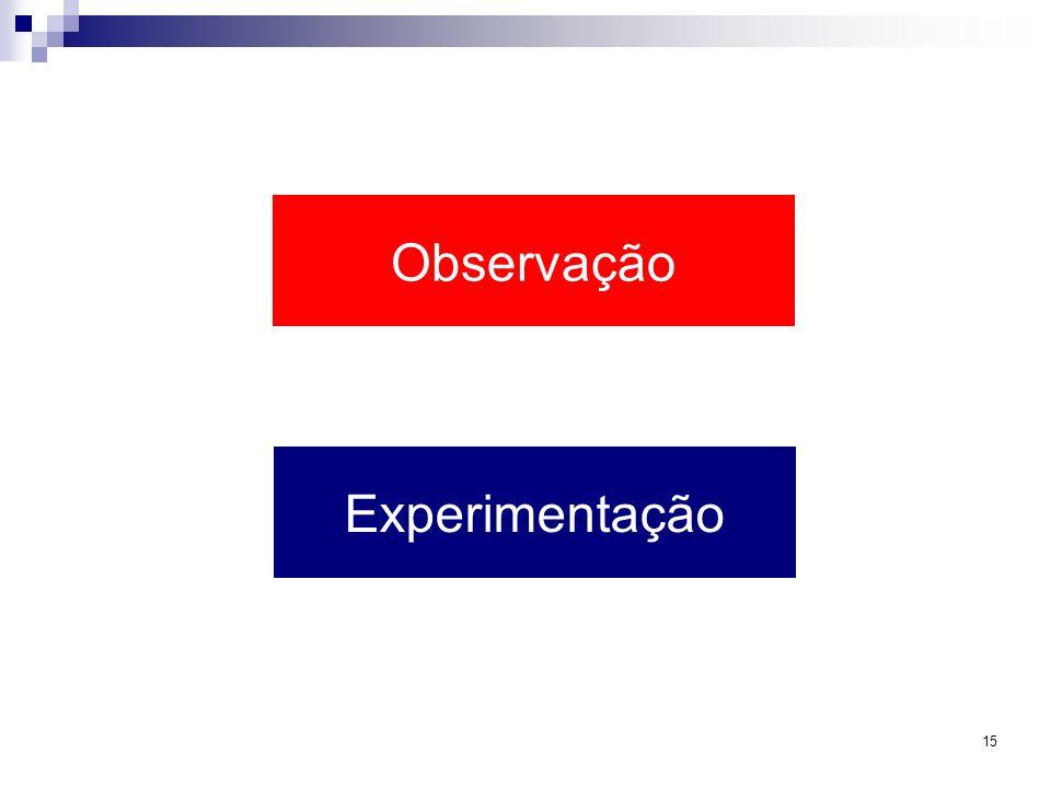15 Observação Experimentação