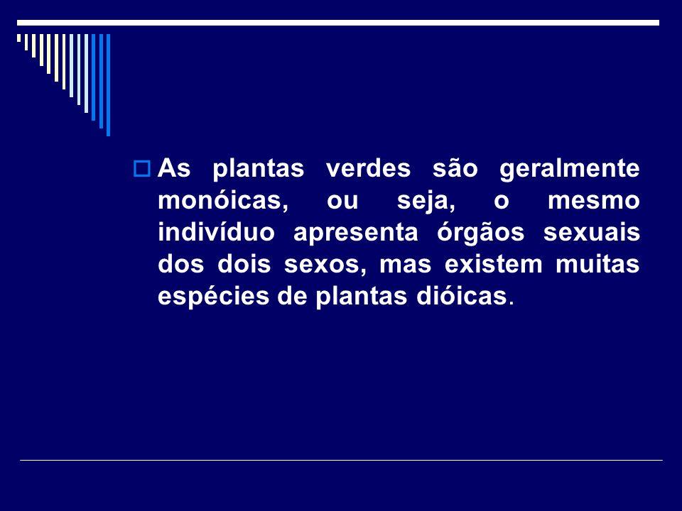 As plantas verdes são geralmente monóicas, ou seja, o mesmo indivíduo apresenta órgãos sexuais dos dois sexos, mas existem muitas espécies de plantas