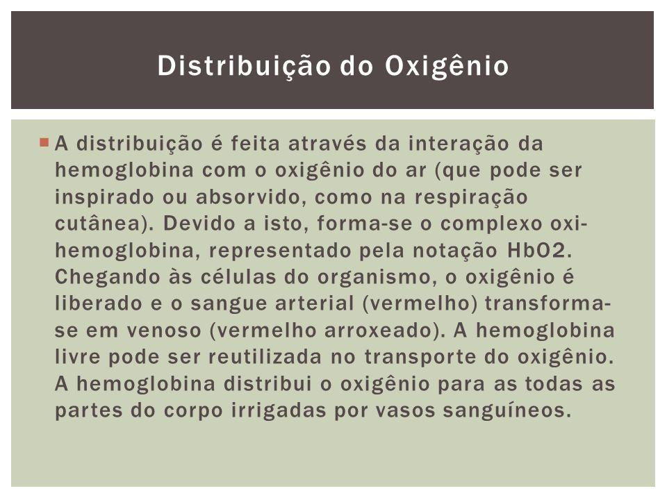 Distribuição do Oxigênio A distribuição é feita através da interação da hemoglobina com o oxigênio do ar (que pode ser inspirado ou absorvido, como na