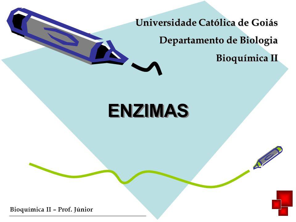 Bioquímica II – Prof. Júnior ENZIMAS Universidade Católica de Goiás Departamento de Biologia Bioquímica II