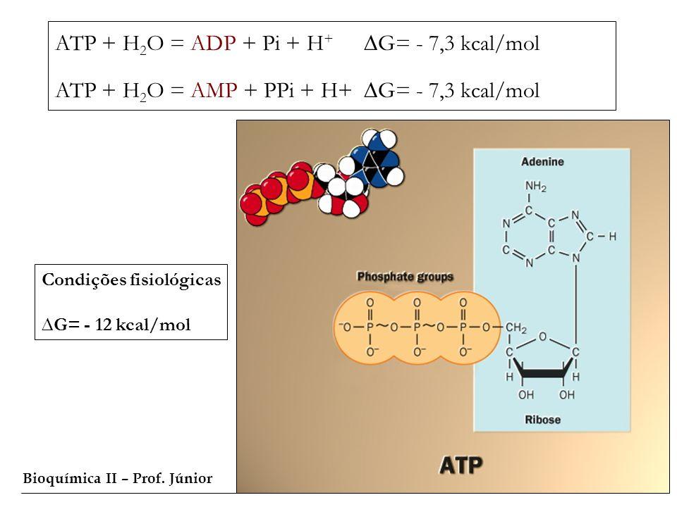 Bioquímica II – Prof. Júnior ATP + H 2 O = ADP + Pi + H + G= - 7,3 kcal/mol ATP + H 2 O = AMP + PPi + H+ G= - 7,3 kcal/mol Condições fisiológicas G= -