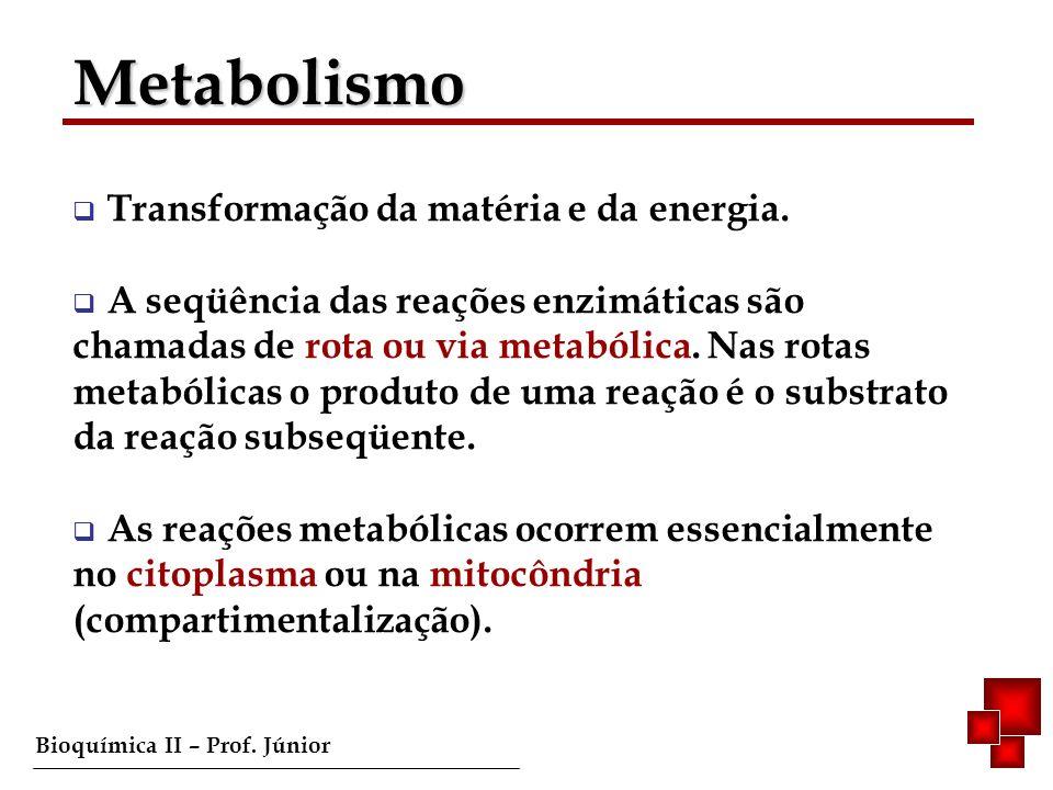 Bioquímica II – Prof. Júnior Transformação da matéria e da energia. A seqüência das reações enzimáticas são chamadas de rota ou via metabólica. Nas ro