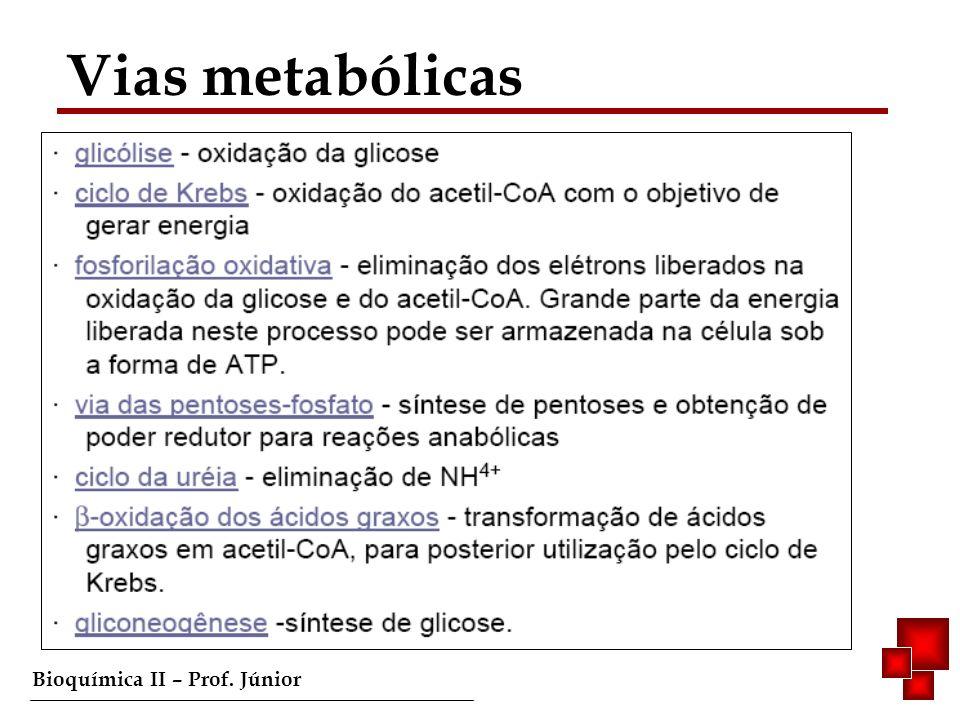 Bioquímica II – Prof. Júnior Vias metabólicas