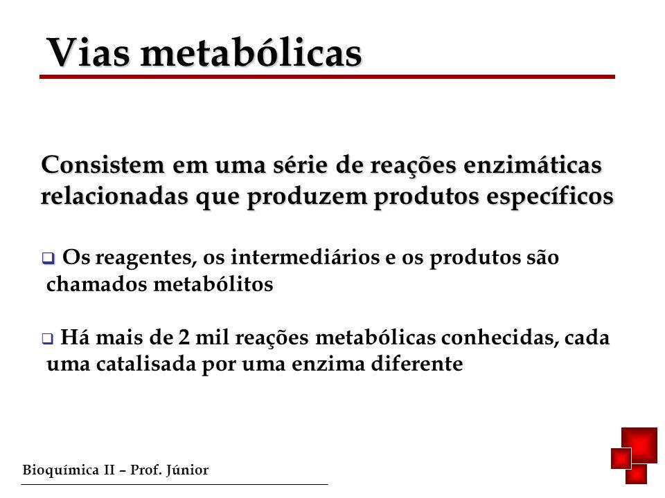 Bioquímica II – Prof. Júnior Vias metabólicas Consistem em uma série de reações enzimáticas relacionadas que produzem produtos específicos Os reagente