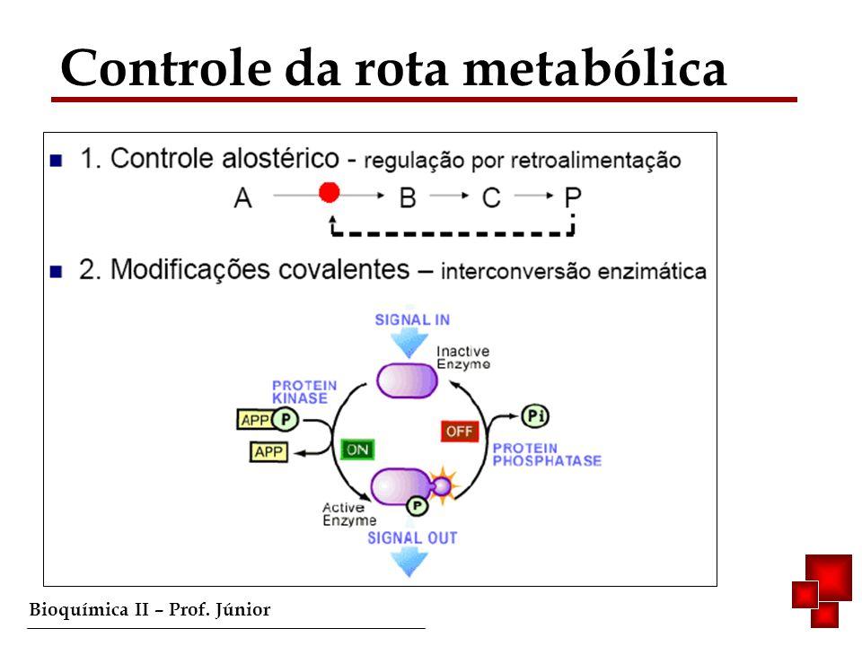 Bioquímica II – Prof. Júnior Controle da rota metabólica