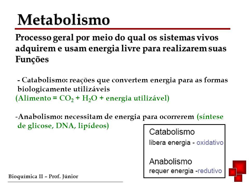 Bioquímica II – Prof. Júnior Metabolismo Processo geral por meio do qual os sistemas vivos adquirem e usam energia livre para realizarem suas Funções