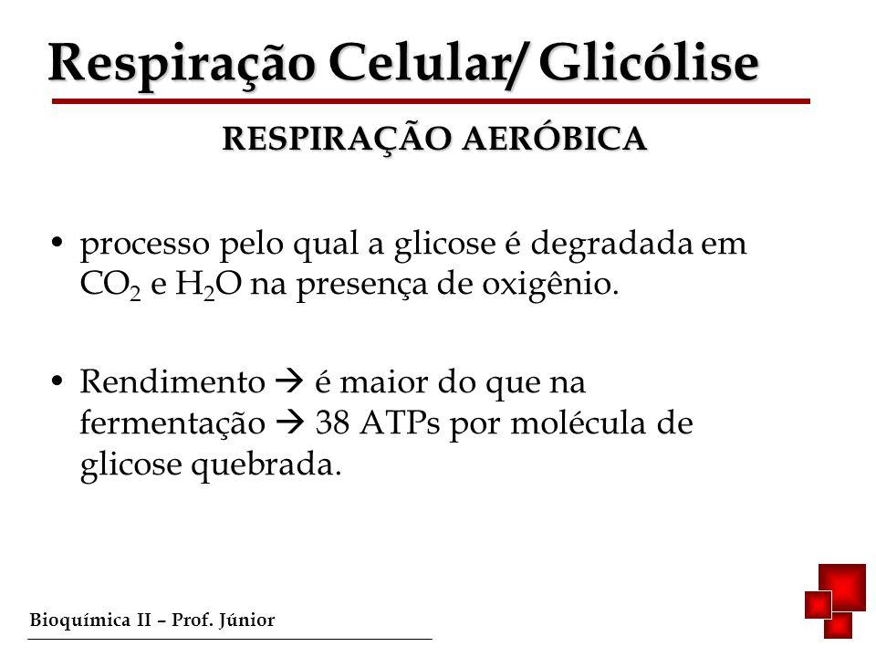 Bioquímica II – Prof. Júnior processo pelo qual a glicose é degradada em CO 2 e H 2 O na presença de oxigênio. Rendimento é maior do que na fermentaçã