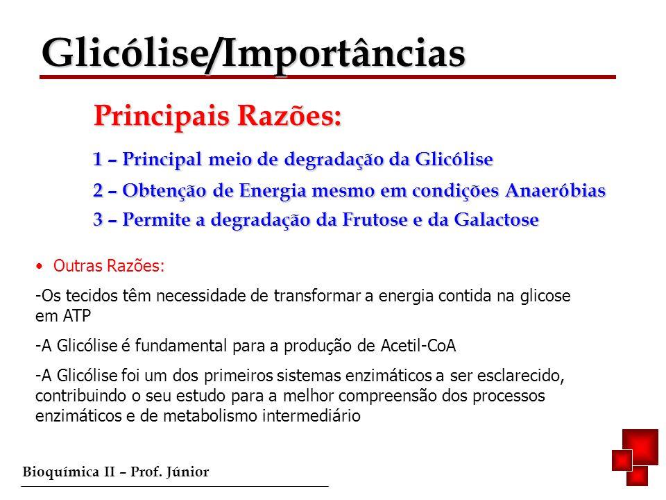 Bioquímica II – Prof. Júnior 1 – Principal meio de degradação da Glicólise 2 – Obtenção de Energia mesmo em condições Anaeróbias 3 – Permite a degrada