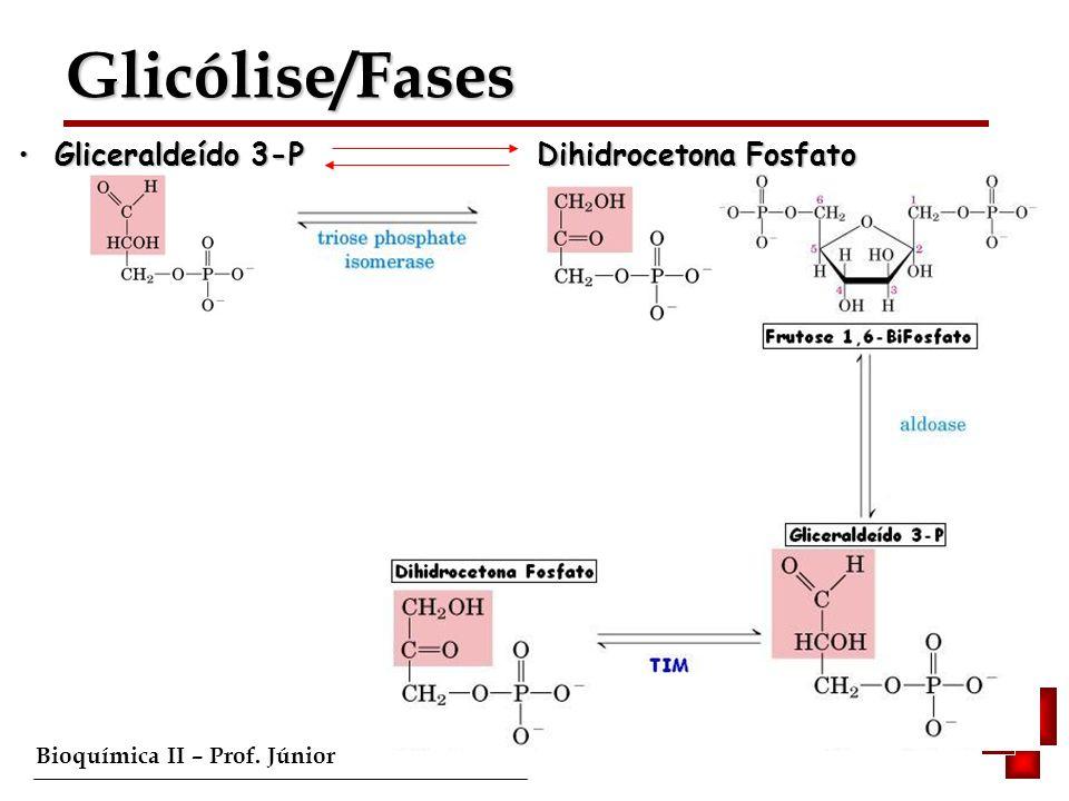 Bioquímica II – Prof. Júnior Gliceraldeído 3-P Dihidrocetona Fosfato Gliceraldeído 3-P Dihidrocetona Fosfato Glicólise/Fases Glicólise/Fases