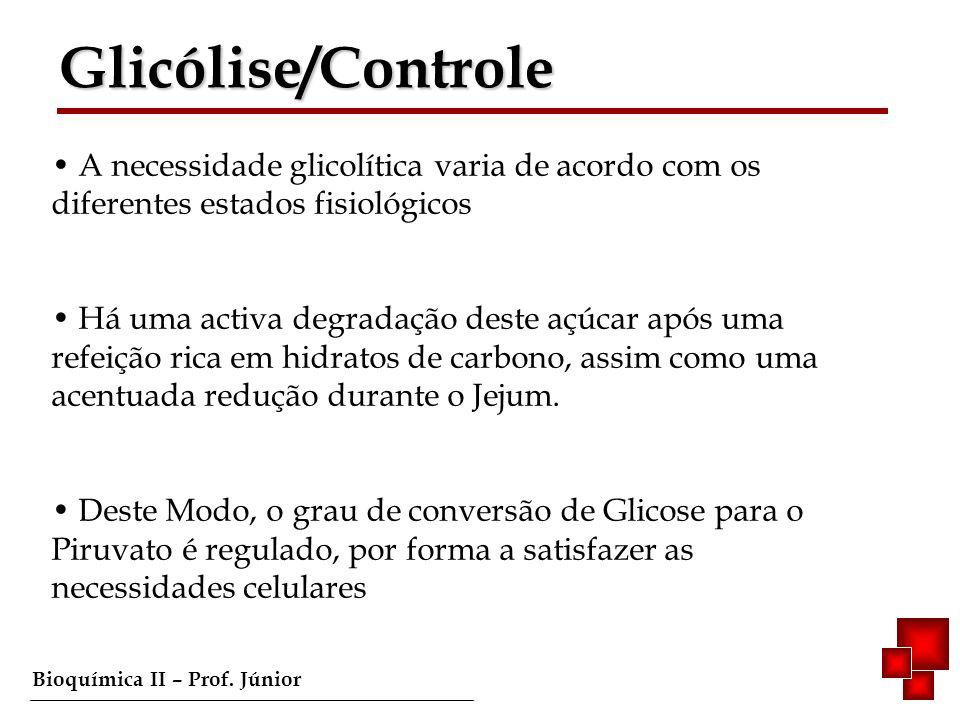 Bioquímica II – Prof. Júnior A necessidade glicolítica varia de acordo com os diferentes estados fisiológicos Há uma activa degradação deste açúcar ap