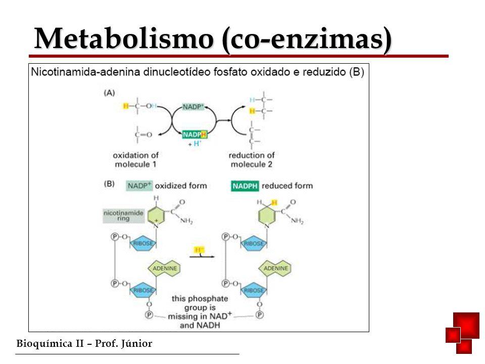 Bioquímica II – Prof. Júnior Respiração Celular/ Glicólise
