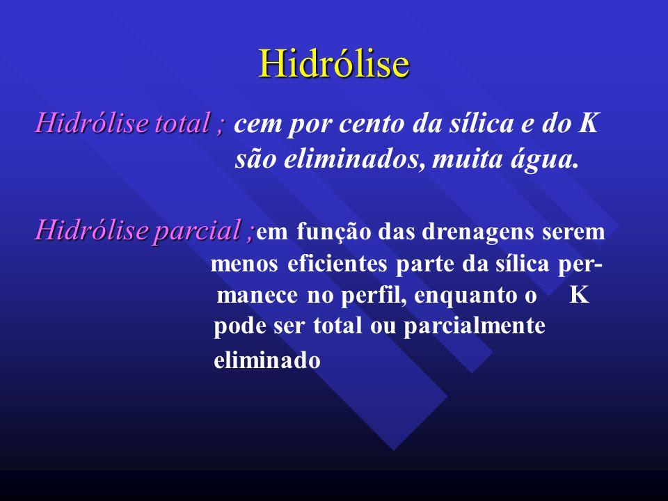 Hidrólise Hidrólise total ; Hidrólise total ; cem por cento da sílica e do K são eliminados, muita água. Hidrólise parcial ; Hidrólise parcial ; em fu