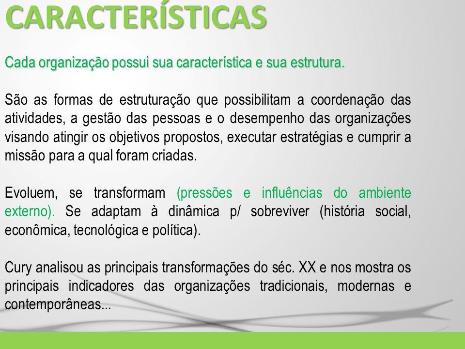 CARACTERÍSTICAS Cada organização possui sua característica e sua estrutura. São as formas de estruturação que possibilitam a coordenação das atividade