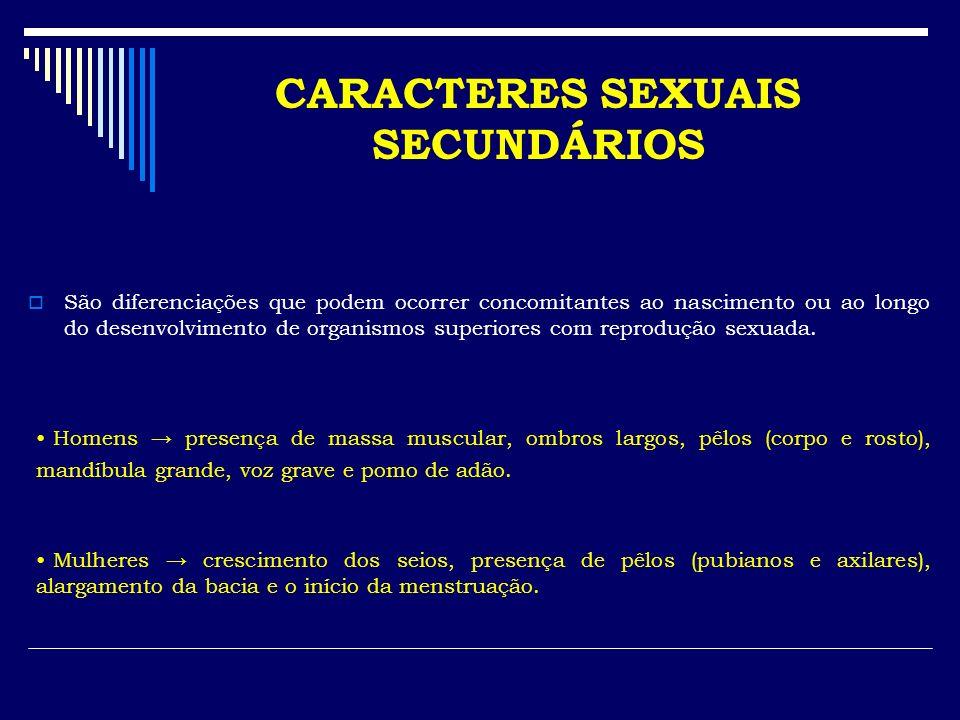 CARACTERES SEXUAIS SECUNDÁRIOS São diferenciações que podem ocorrer concomitantes ao nascimento ou ao longo do desenvolvimento de organismos superiore