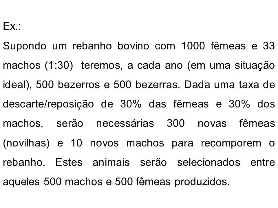 Ex.: Supondo um rebanho bovino com 1000 fêmeas e 33 machos (1:30) teremos, a cada ano (em uma situação ideal), 500 bezerros e 500 bezerras. Dada uma t