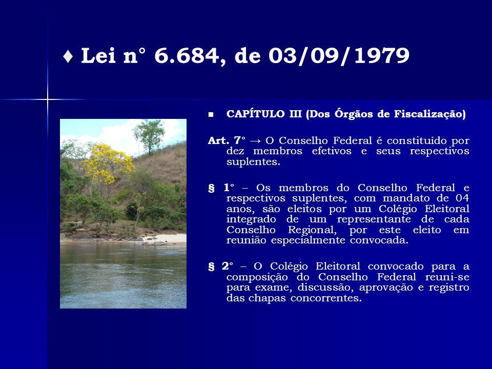 CAPÍTULO III (Dos Órgãos de Fiscalização) Art.