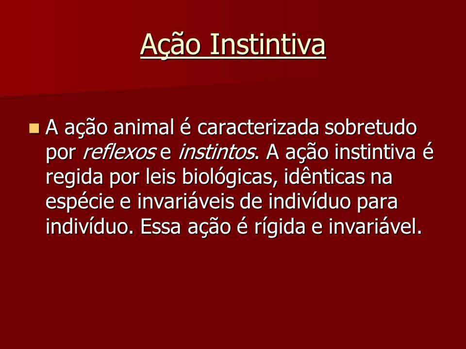 Ação Instintiva A ação animal é caracterizada sobretudo por reflexos e instintos. A ação instintiva é regida por leis biológicas, idênticas na espécie