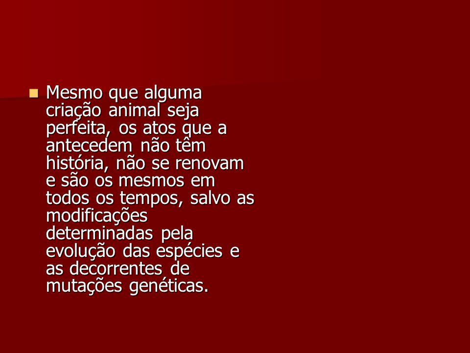 Mesmo que alguma criação animal seja perfeita, os atos que a antecedem não têm história, não se renovam e são os mesmos em todos os tempos, salvo as m