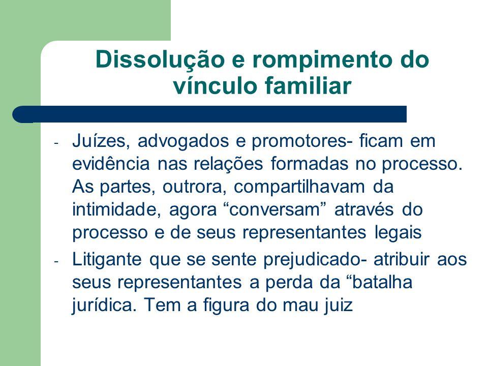 Dissolução e rompimento do vínculo familiar - Juízes, advogados e promotores- ficam em evidência nas relações formadas no processo. As partes, outrora
