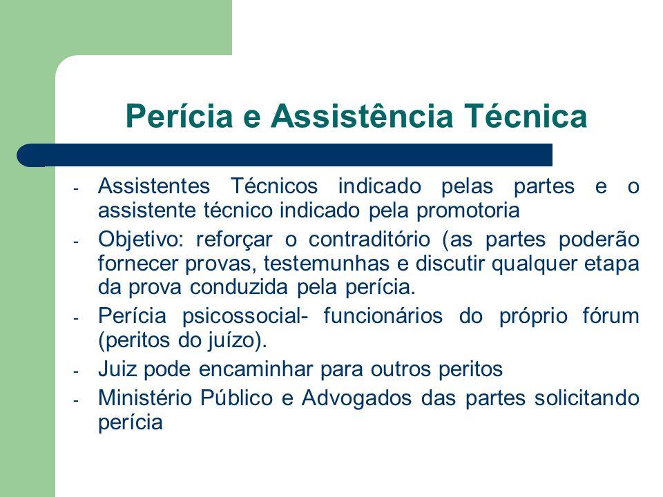 Perícia e Assistência Técnica - Assistentes Técnicos indicado pelas partes e o assistente técnico indicado pela promotoria - Objetivo: reforçar o cont