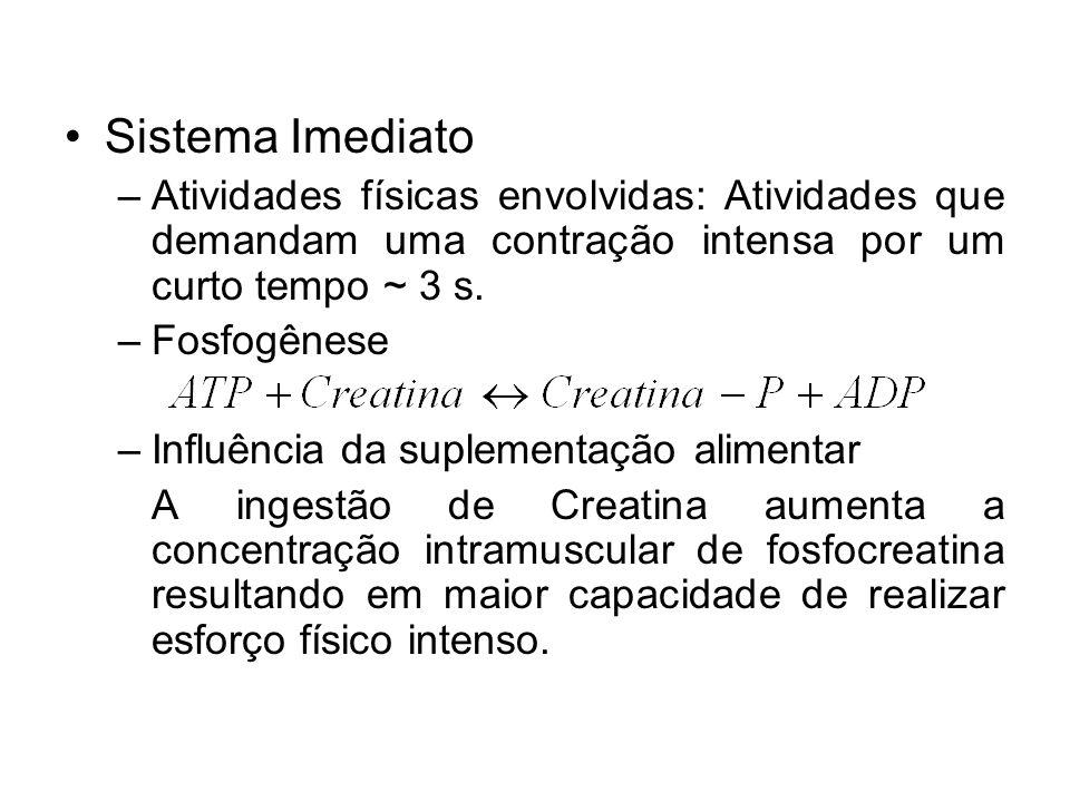 Sistema Imediato –Atividades físicas envolvidas: Atividades que demandam uma contração intensa por um curto tempo ~ 3 s. –Fosfogênese –Influência da s
