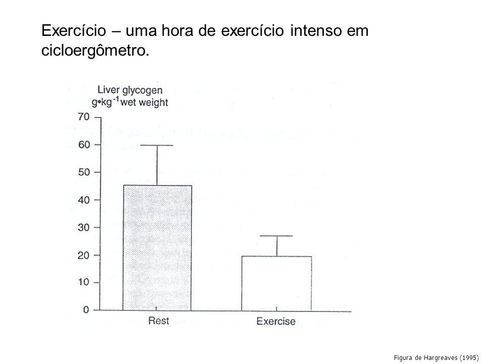 Figura de Hargreaves (1995) Exercício – uma hora de exercício intenso em cicloergômetro.