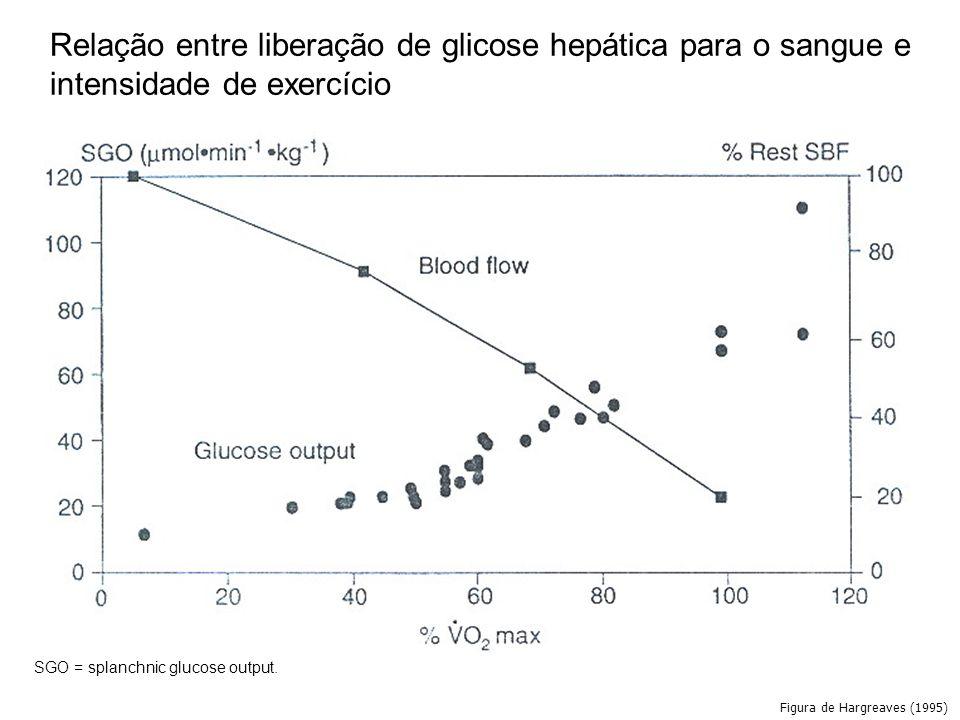Figura de Hargreaves (1995) Relação entre liberação de glicose hepática para o sangue e intensidade de exercício SGO = splanchnic glucose output.