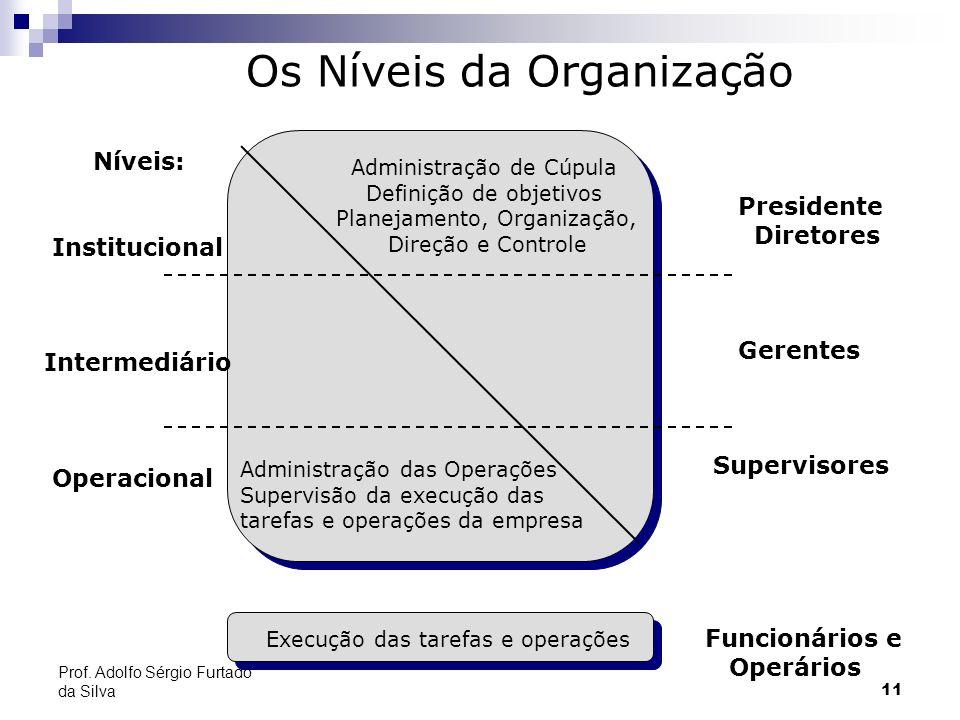 11 Níveis: Institucional Intermediário Operacional Administração de Cúpula Definição de objetivos Planejamento, Organização, Direção e Controle Admini