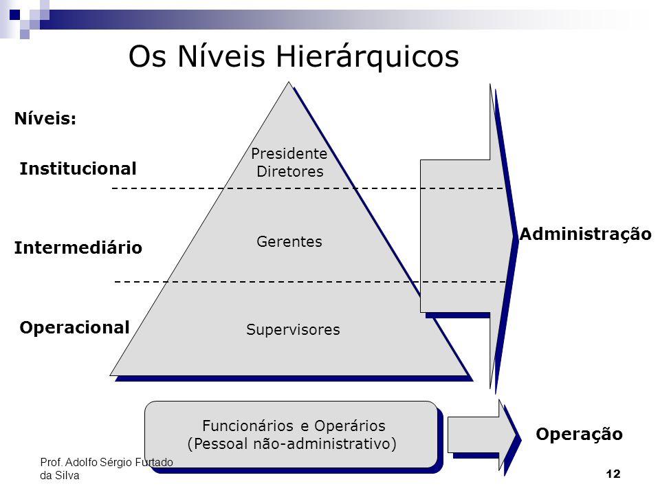12 Os Níveis Hierárquicos Níveis: Institucional Intermediário Operacional Presidente Diretores Gerentes Supervisores Administração Operação Funcionári