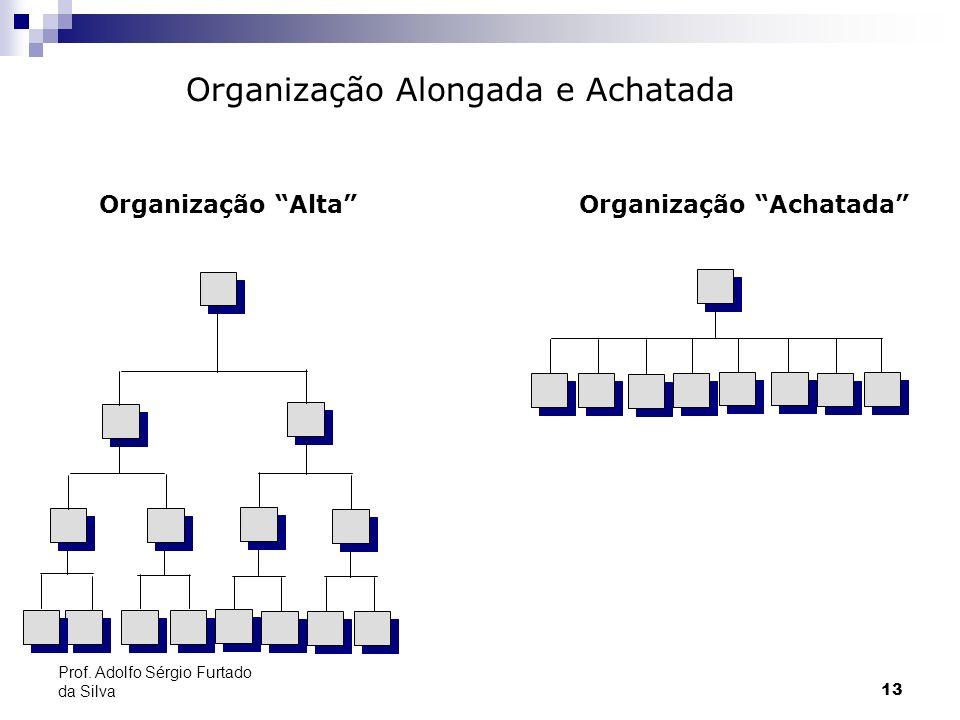 13 Prof. Adolfo Sérgio Furtado da Silva Organização Alongada e Achatada Organização AltaOrganização Achatada