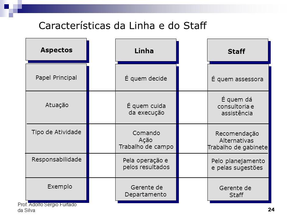 24 Prof. Adolfo Sérgio Furtado da Silva Staff É quem assessora É quem dá consultoria e assistência Recomendação Alternativas Trabalho de gabinete Pelo