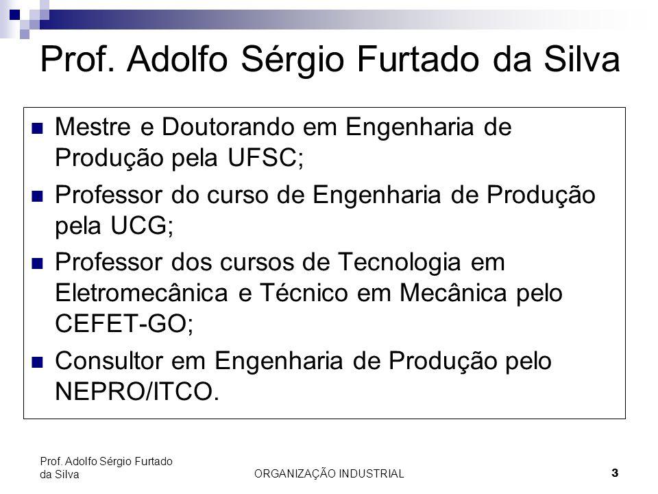 ORGANIZAÇÃO INDUSTRIAL 3 Prof. Adolfo Sérgio Furtado da Silva Mestre e Doutorando em Engenharia de Produção pela UFSC; Professor do curso de Engenhari