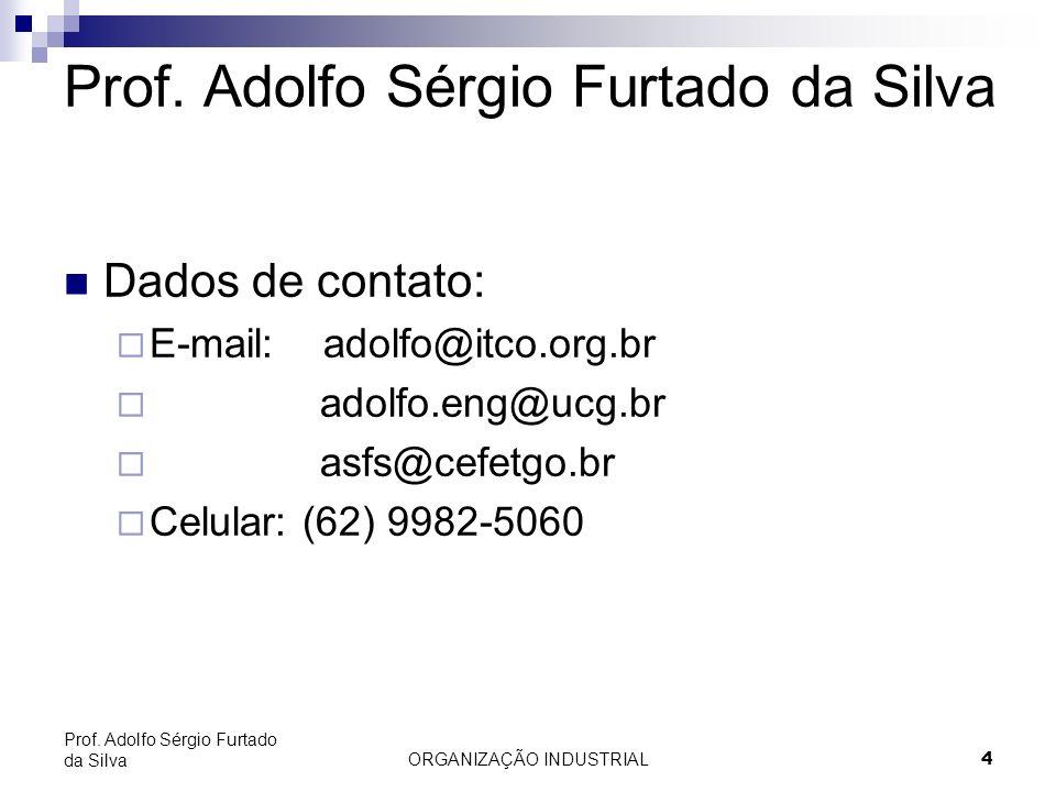 ORGANIZAÇÃO INDUSTRIAL 4 Prof. Adolfo Sérgio Furtado da Silva Dados de contato: E-mail: adolfo@itco.org.br adolfo.eng@ucg.br asfs@cefetgo.br Celular: