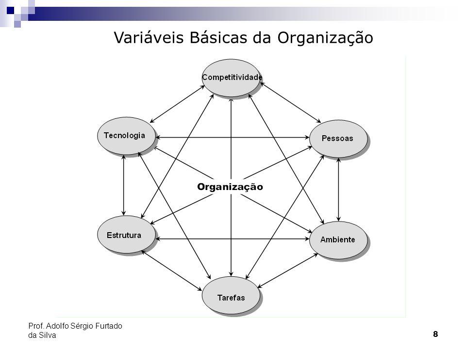 8 Prof. Adolfo Sérgio Furtado da Silva Variáveis Básicas da Organização