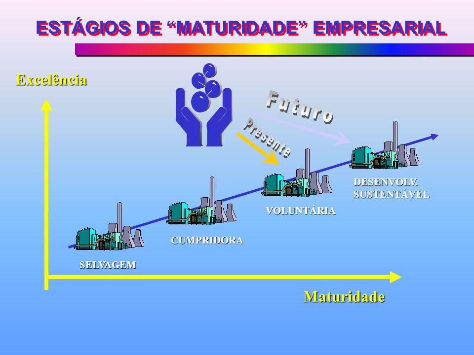 SELVAGEM CUMPRIDORA VOLUNTÁRIA DESENVOLV. SUSTENTÁVEL ESTÁGIOS DE MATURIDADE EMPRESARIAL Excelência Maturidade