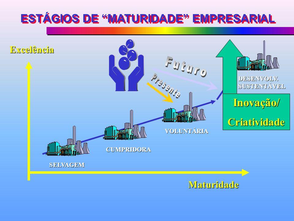 SELVAGEM CUMPRIDORA VOLUNTÁRIA DESENVOLV. SUSTENTÁVEL Excelência Maturidade ESTÁGIOS DE MATURIDADE EMPRESARIAL Inovação/Criatividade