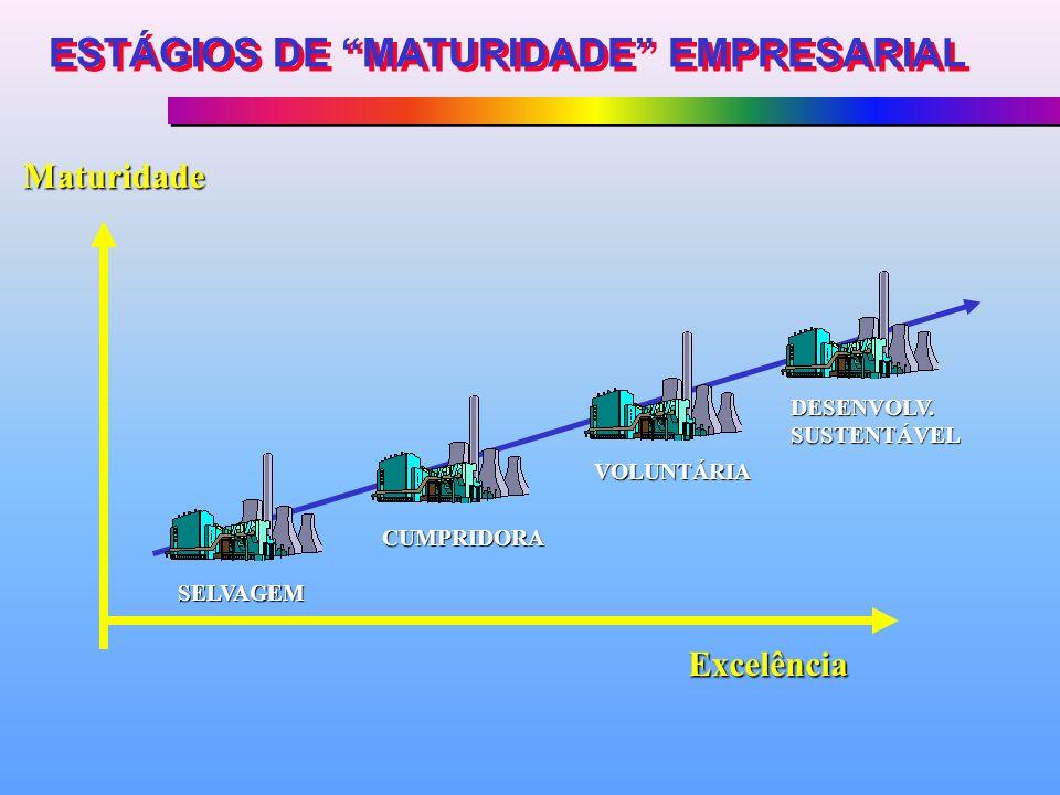 SELVAGEM CUMPRIDORA VOLUNTÁRIA DESENVOLV. SUSTENTÁVEL Excelência Maturidade ESTÁGIOS DE MATURIDADE EMPRESARIAL
