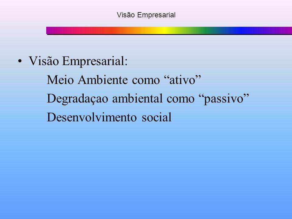 Visão Empresarial Visão Empresarial: Meio Ambiente como ativo Degradaçao ambiental como passivo Desenvolvimento social