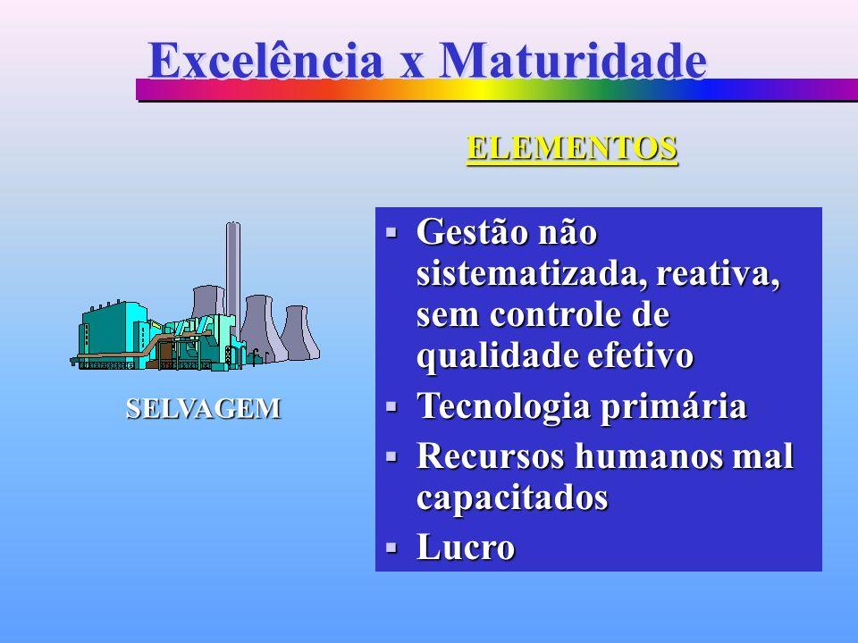 Gestão não sistematizada, reativa, sem controle de qualidade efetivo Gestão não sistematizada, reativa, sem controle de qualidade efetivo Tecnologia p