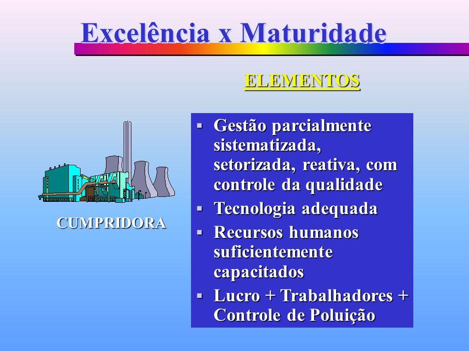 Gestão parcialmente sistematizada, setorizada, reativa, com controle da qualidade Gestão parcialmente sistematizada, setorizada, reativa, com controle