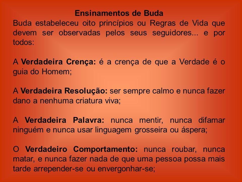 Ensinamentos de Buda Buda estabeleceu oito princípios ou Regras de Vida que devem ser observadas pelos seus seguidores... e por todos: A Verdadeira Cr