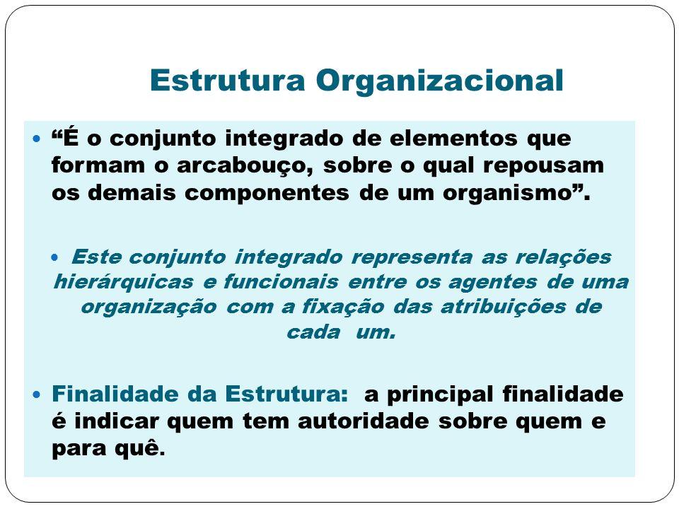 Estrutura Organizacional É o conjunto integrado de elementos que formam o arcabouço, sobre o qual repousam os demais componentes de um organismo. Este